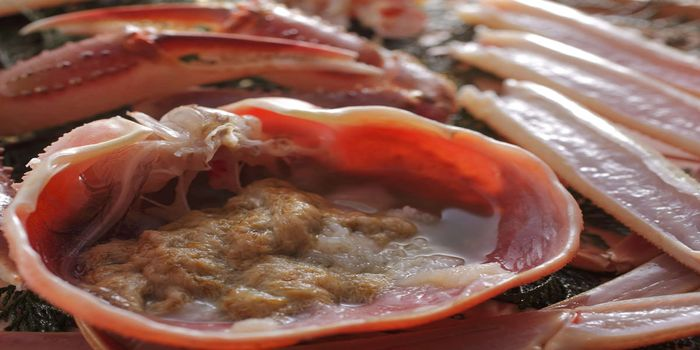 カニ味噌の刺身