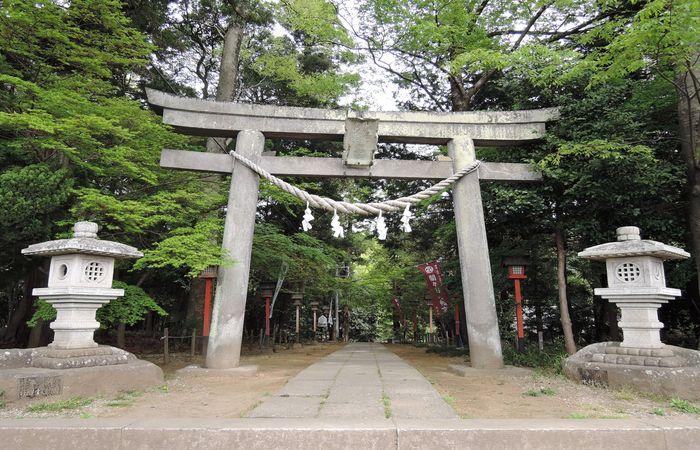 間々田八幡宮(鳥居)
