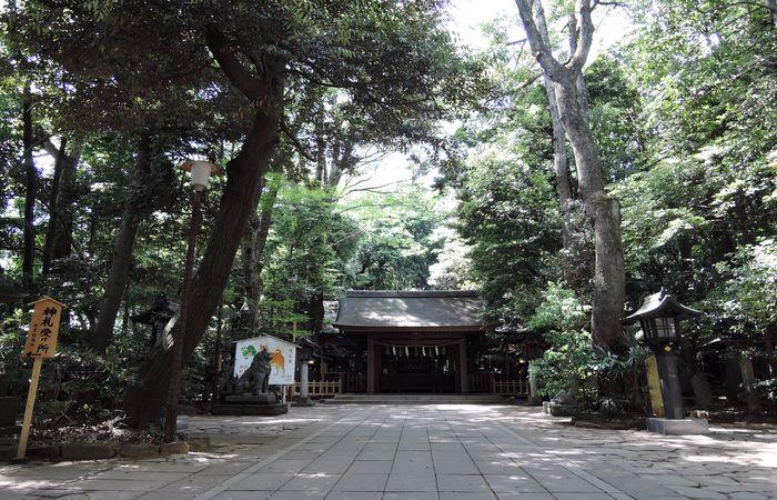 諏訪神社(拝殿)