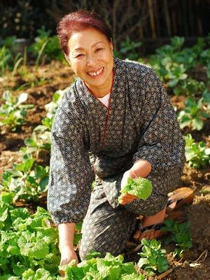 有機栽培野菜