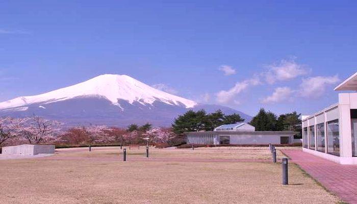 中庭と富士山