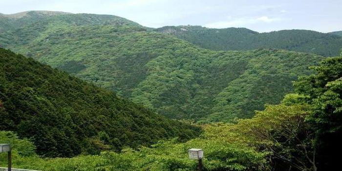 熱海自然郷