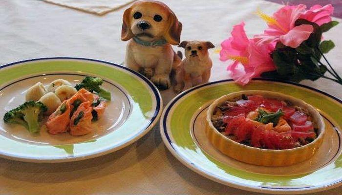愛犬ディナー