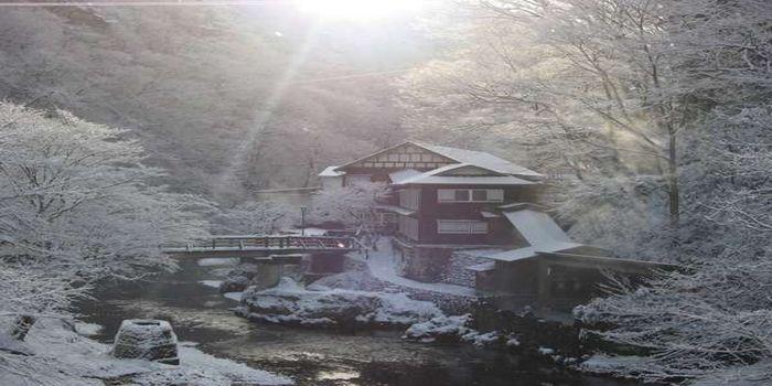混浴露天風呂(冬)