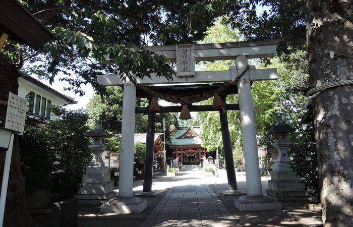 前川神社(鳥居と参道)