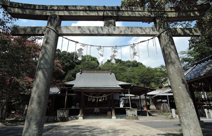 賀茂別雷神社(社殿)