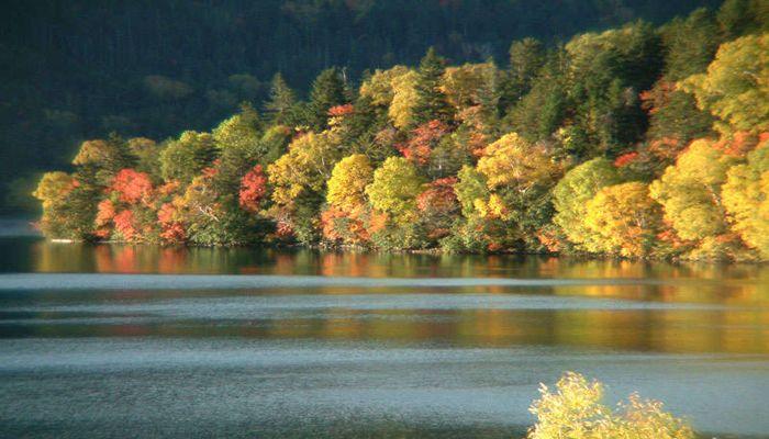 紅葉の然別湖