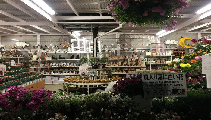 生花コーナー