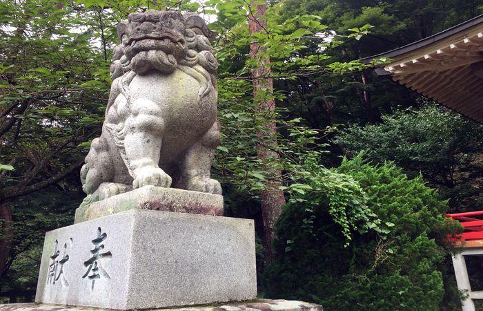 藤原町護国神社|狛犬
