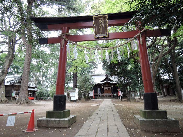 鳥居(氷川女體神社)