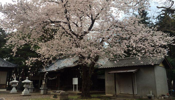 笹久保神社