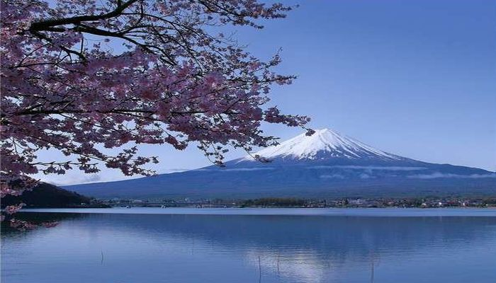 富士山と河口湖
