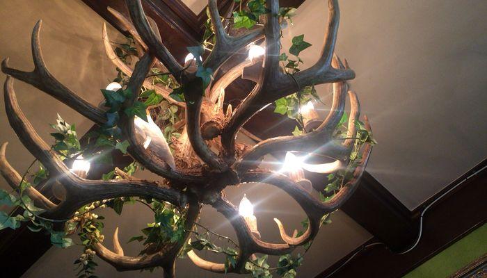 鹿の角の電気