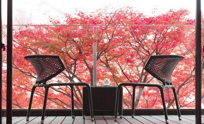 紅葉の見えるホテル
